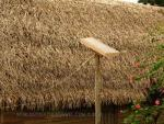 Small solar collector on a stake in front of a thatched roof